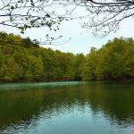 Yedigöller Milli Parkı / Bolu