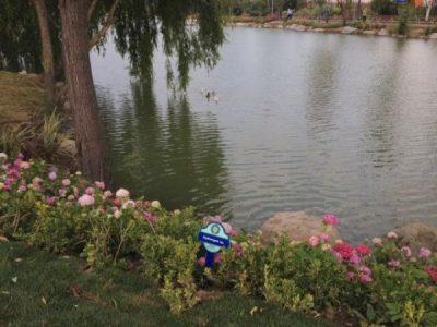 Bakırköy Botanik Park Gölet
