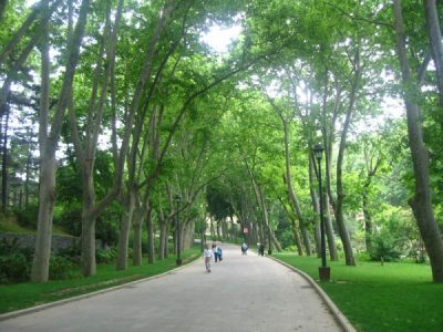 Gülhane Parkı 03