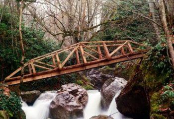 Samandere Şelalesi Nerede Nasıl Gidilir, Konaklama – Tabiat Parkı / Düzce