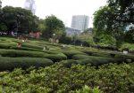 Hong Kong - Kowloon Park - 02