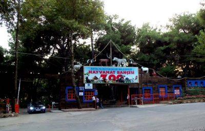 Antalya Hayvanat Bahçesi - 02