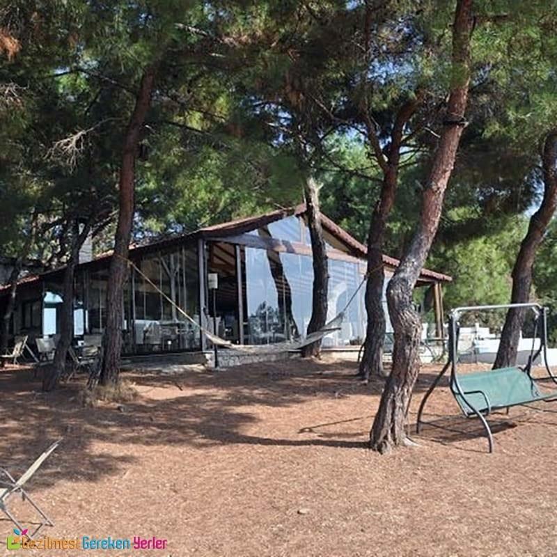Teos Park Çamlık