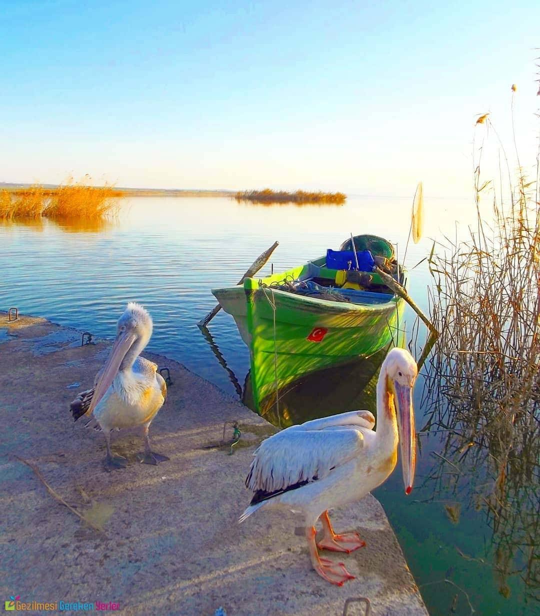 Manyas Kuşgölü - Balıkesir